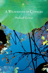 a wilderness of chances by michael cervas cover image