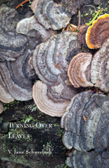 turning over leves by jane schneeloch cover image