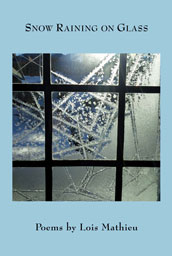 Snow Raining on Glass cover image
